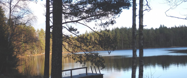Suomusjärvi